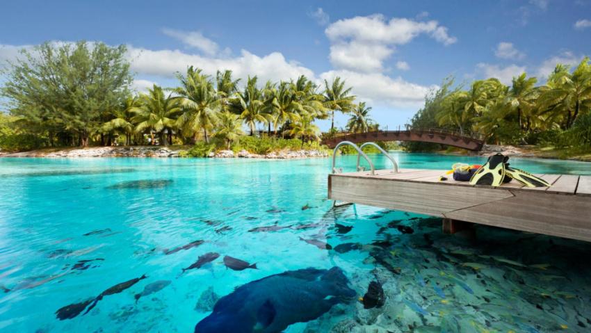 大溪地波拉波拉瑞吉+主岛索菲特~海岛中的爱马仕,低调奢华的杰作